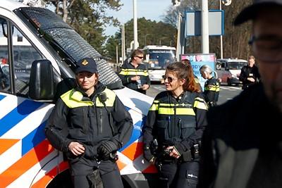 Tijgers in uniform! © De Brouwer