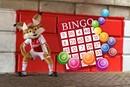 Luckys Bingo 1200